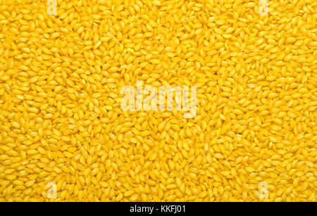 Uncooked risotto rice grains with turmeric - Stock Photo