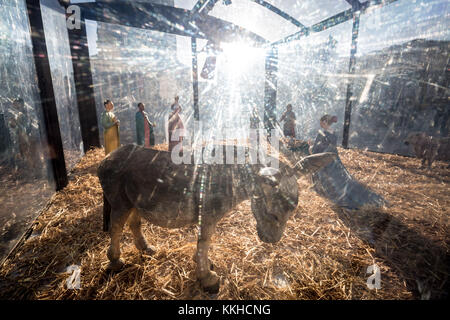 London, UK. 1st Dec, 2017. Afternoon sun busts over the annual St Martin-in-the-Fields crib nativity scene in Trafalgar - Stock Photo