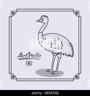 australia emu in frame and monochrome silhouette - Stock Photo