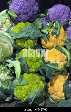 Colourful gree, purple, mauve, yellow and white varieties of cauliflower beautifully displayed in a couolourful - Stock Photo