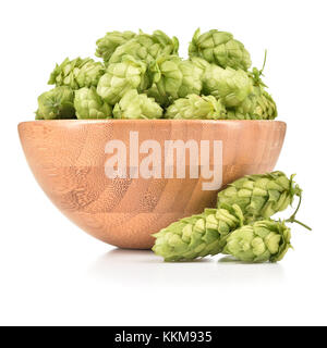 Fresh hops (Humulus lupulus) in wooden bowl isolated on white background. Pile of hops, ingredient for brewery industry. - Stock Photo