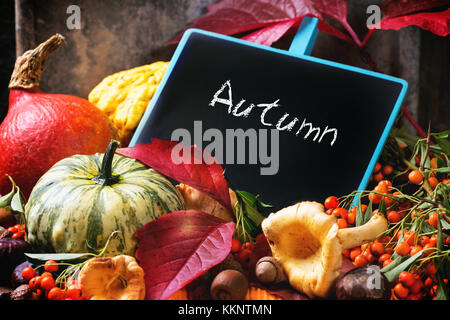 Pumpkins, nuts, berries and mushrooms chanterelle with empty chalkboard over old wooden table. See series - Stock Photo