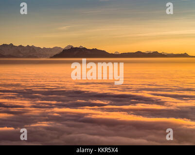 Sunset over the sea of fog on the Uetliberg near Zurich - Stock Photo