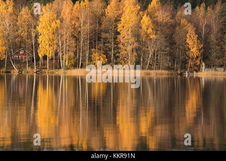 Forest in autumn colors reflected on the lake surface - Stock Photo