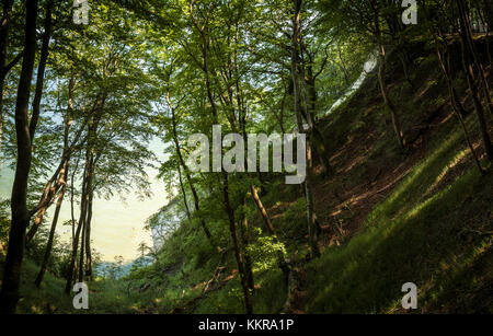 View of Königsstuhl King`s Chair, the famous chalk cliff on Rügen Island, Jasmund National Park. - Stock Photo