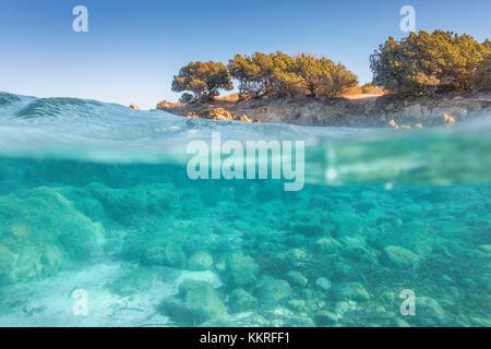 Half underwater photo with the sea bed and trees in Rena Bianca beach in Portisco (Olbia) Costa Smeralda, Olbia - Stock Photo