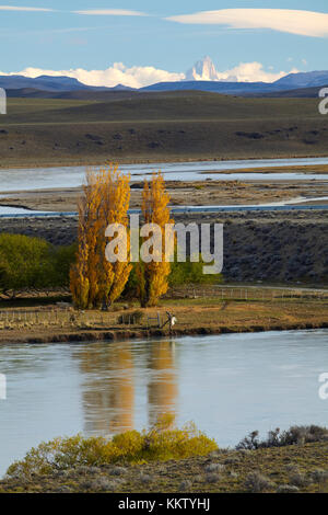 Poplar trees and La Leona River, Patagonia, Argentina, South America - Stock Photo