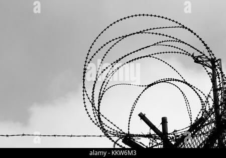 Prison Fence in Black and White. Barbed Wire Fence Closeup Stock ...