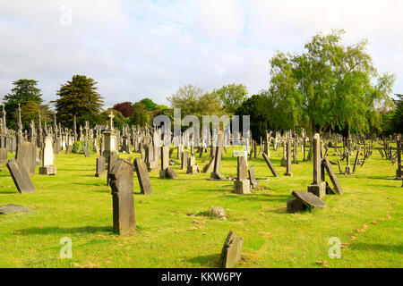 landscape of Irish cemetery full of stones of the Gothic period--- Ireland, Dublin - May 22, 2015: photograph of - Stock Photo
