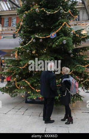 London, UK. 3rd Dec, 2017. A Giant decorated Christmas tree donated by the RHS Royal Horticultural Society is installed - Stock Photo