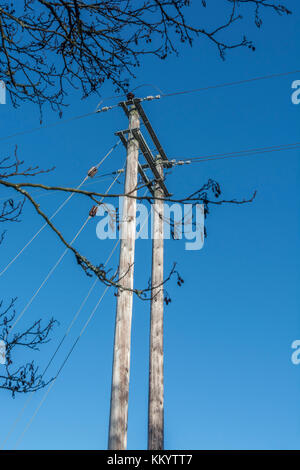 Rural electricity distribution poles surrounded by trees (which could bring down electrical wires in high wind causing - Stock Photo