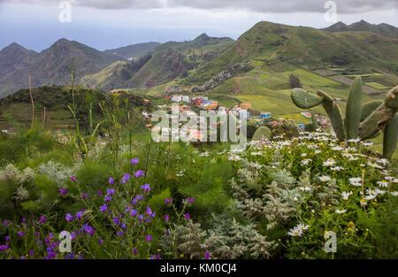 The village Vega de Las Mercedes, view from view point Mirador de las Mercedes at Anaga-Gebirge, Tenerife island, - Stock Photo