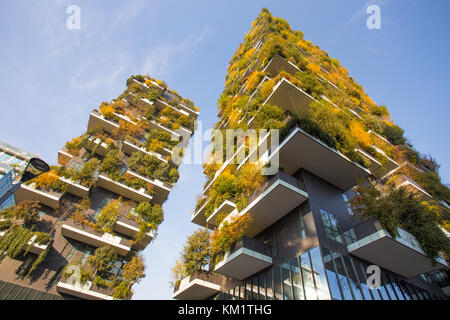 MILAN, ITALY, NOVEMBER 11, 2017 - 'Bosco Verticale', vertical forest in autumn time, apartments and buildings in - Stock Photo