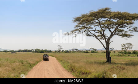 Safari jeep in the Serengeti, Tanzania, Africa - Stock Photo