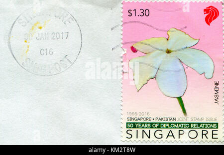 GOMEL, BELARUS, 3 DECEMBER 2017, Stamp printed in Singapore shows image of the Jasmine, circa 2016. - Stock Photo