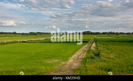Polder landscape with fields and trees in river Scheldt estuary, part of the Sigma plan, offering flood protection - Stock Photo
