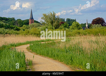Walking trail through marsh landscape with reed fields and trees and the church tower of a small village in river - Stock Photo
