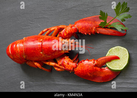 Red lobster with parsley and lime in claws on black stone fun seafood concept - Stock Photo
