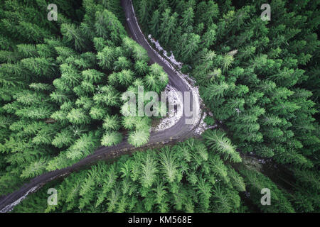 Empty road in a forest from a drone - Stock Photo