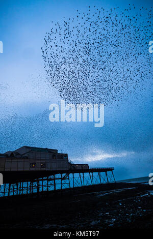 Aberystwyth Wales UK, Tuesday 05 December 2017  UK Weather:   On a grey damp evening in Aberystwyth  thousands of - Stock Photo
