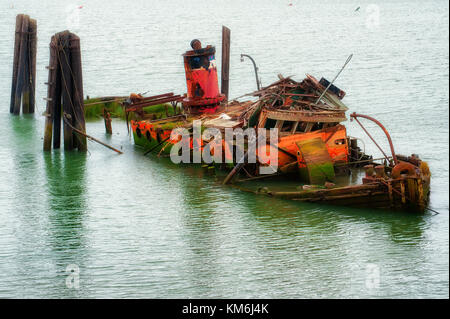 Remains of a steamer, Mary D. Hume, built in 1881 and retired in 1977 and sank in the Rogue River in 1985. - Stock Photo