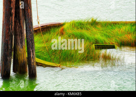 Grass grows in the remains left above the waterline of the Mary D. Hume.   A steamer, Mary D. Hume, built in 1881 - Stock Photo