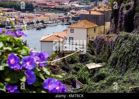 Porto Portugal Douro River Barrio La Ribeira historic center residential apartment building city skyline rooftops - Stock Photo