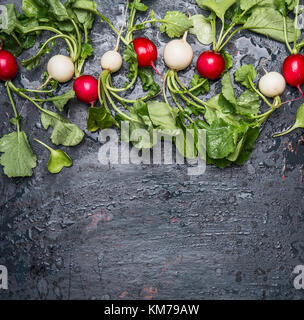Red and white radishes with green haulm leaves on dark  rustic background, top view, place for text, border. - Stock Photo