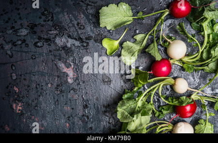 Colorful radishes with green haulm leaves on dark rustic background, top view, place for text. Clean healthy organic - Stock Photo