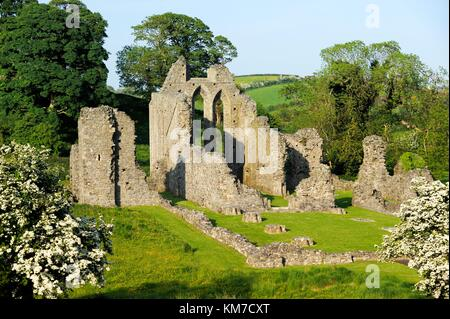 Inch Abbey near Downpatrick, County Down, Northern Ireland. Norman Cistercian abbey founded 1180 by John de Courcy. - Stock Photo