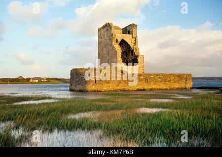 15thC. Carrigafoyle Castle near Ballylongford, Co. Kerry, Ireland. On south shore of River Shannon estuary. - Stock Photo