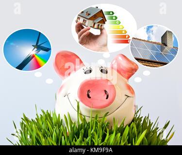 česká ekonomika a finance - výdaje na ekologickou domácnost, pasivní dům a alternativní zdroje / prasátko a peníze - Stock Photo