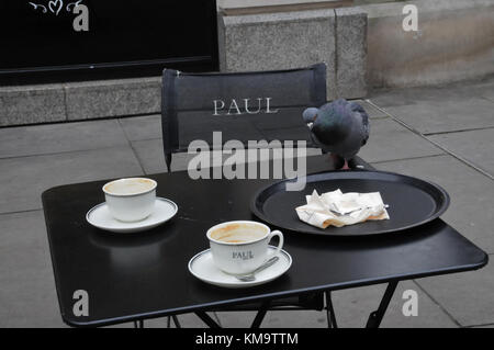 A feral pigeon, in London, picks over crumbs, at an Al fresco cafe - Stock Photo