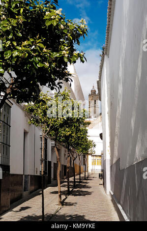 White houses with church in the background in Medina Sidonia, Cadiz province, Andalusia, Spain - Stock Photo