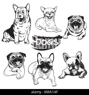 Set of hand drawn sketch style dogs - welsh corgi, chihuahua, pugs and french bulldogs. Vector illustration isolated - Stock Photo