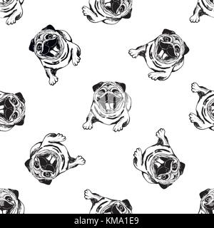 Seamless pattern of hand drawn sketch style pugs. Vector illustration isolated on white background. - Stock Photo