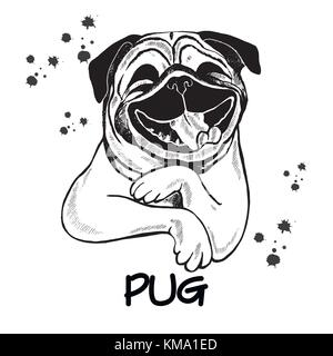 Hand drawn sketch style pug. Vector illustration isolated on white background. - Stock Photo