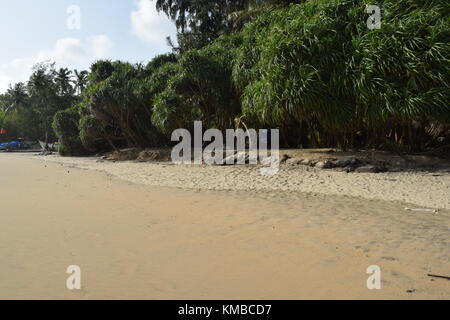 Goa beaches : Cool and calm sandy beach images from India. Seashore / Seaside / beach photos / silent empty beach - Stock Photo