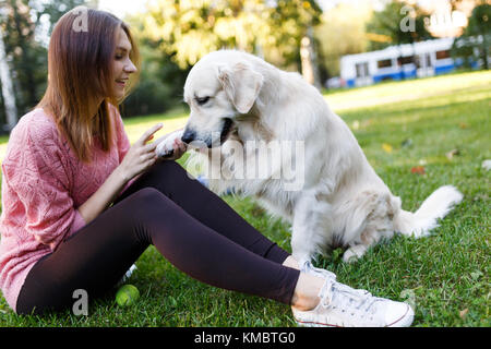 Photo of woman on walk with labrador giving paw - Stock Photo