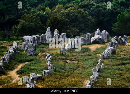 Carnac, Brittany, France. The Kermario group of prehistoric stone row alignments looking southwest toward the tallest - Stock Photo