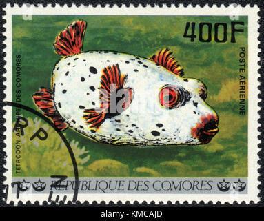 A stamp printed in COMOROS shows  a Tetrodon, series 'Tropical Fishes', circa 1977 - Stock Photo