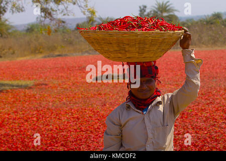 Farmers at local chili market, Umred, Maharashtra, India - Stock Photo