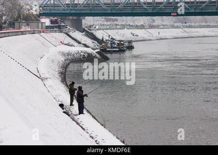 Along the Danube river - Stock Photo