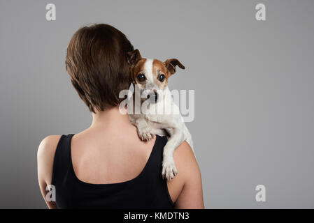 Jack russell terrier together with owner view from back. Woman hold terrier dog - Stock Photo