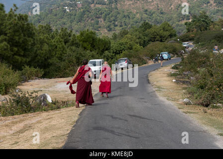 Two monks walking along the road in a rural area on the way to their monastery. - Stock Photo