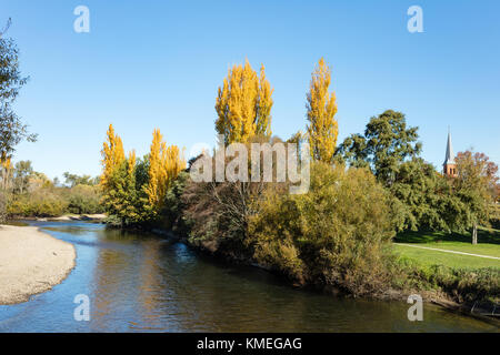 View over the Tumut River and the radiant golden poplars to All Saints Anglican Church in Tumut in the Snowy Mountains - Stock Photo
