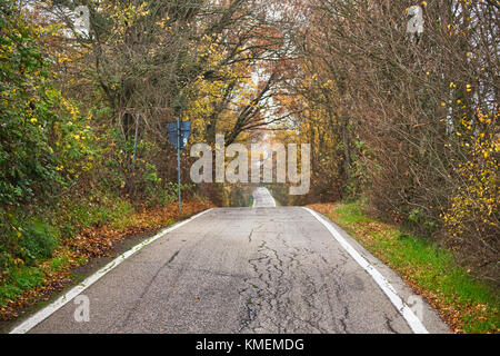 road to vanishing point running though fall colors on hills near Bologna in Italy - Stock Photo