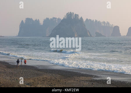 Riatlo Beach on the Pacific Ocean in Olympic National Park in the coast of Washington State in the United States - Stock Photo