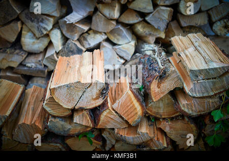 Pile of ready to use logs - Stock Photo