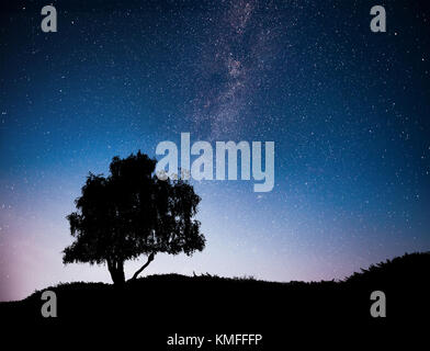 Landscape with night starry sky and silhouette of tree on the hill. Milky way with lonely tree, falling stars. Universe - Stock Photo